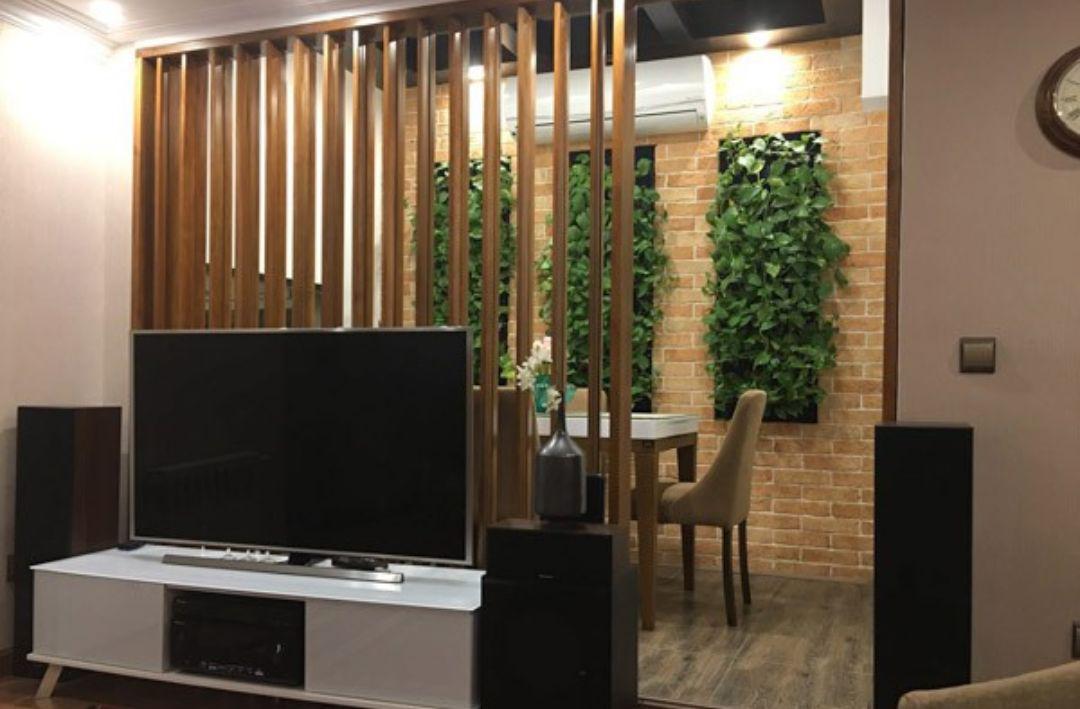 تزیین دیوار با گیاه
